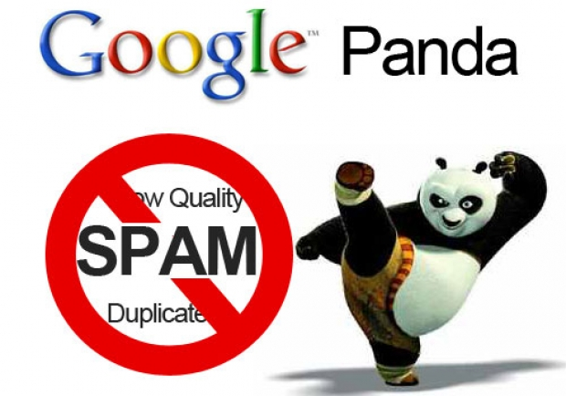 Update-ul Google Panda si importanta in SEO